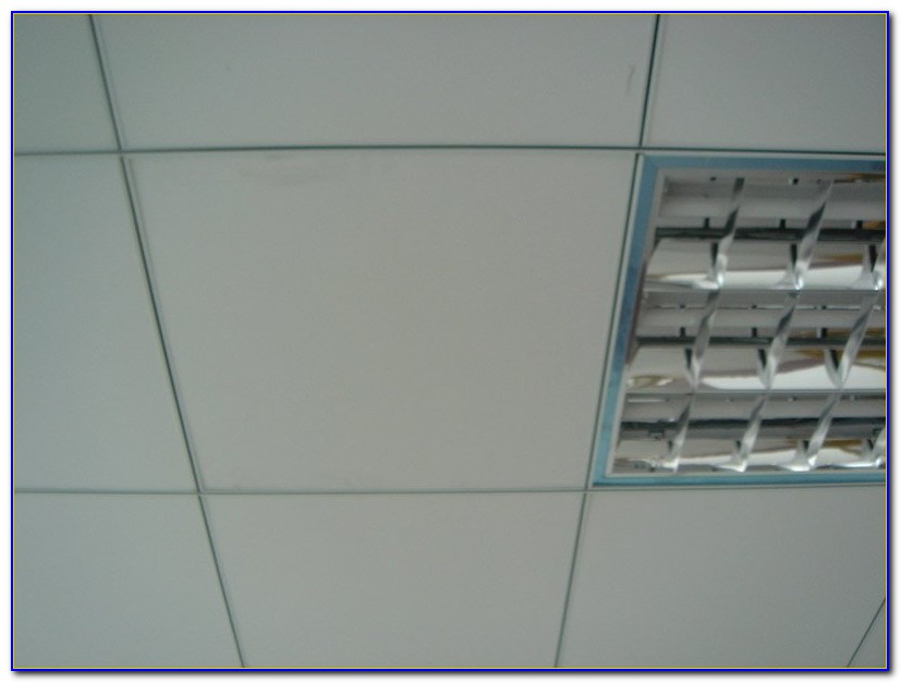 Water Resistant Ceiling Tile