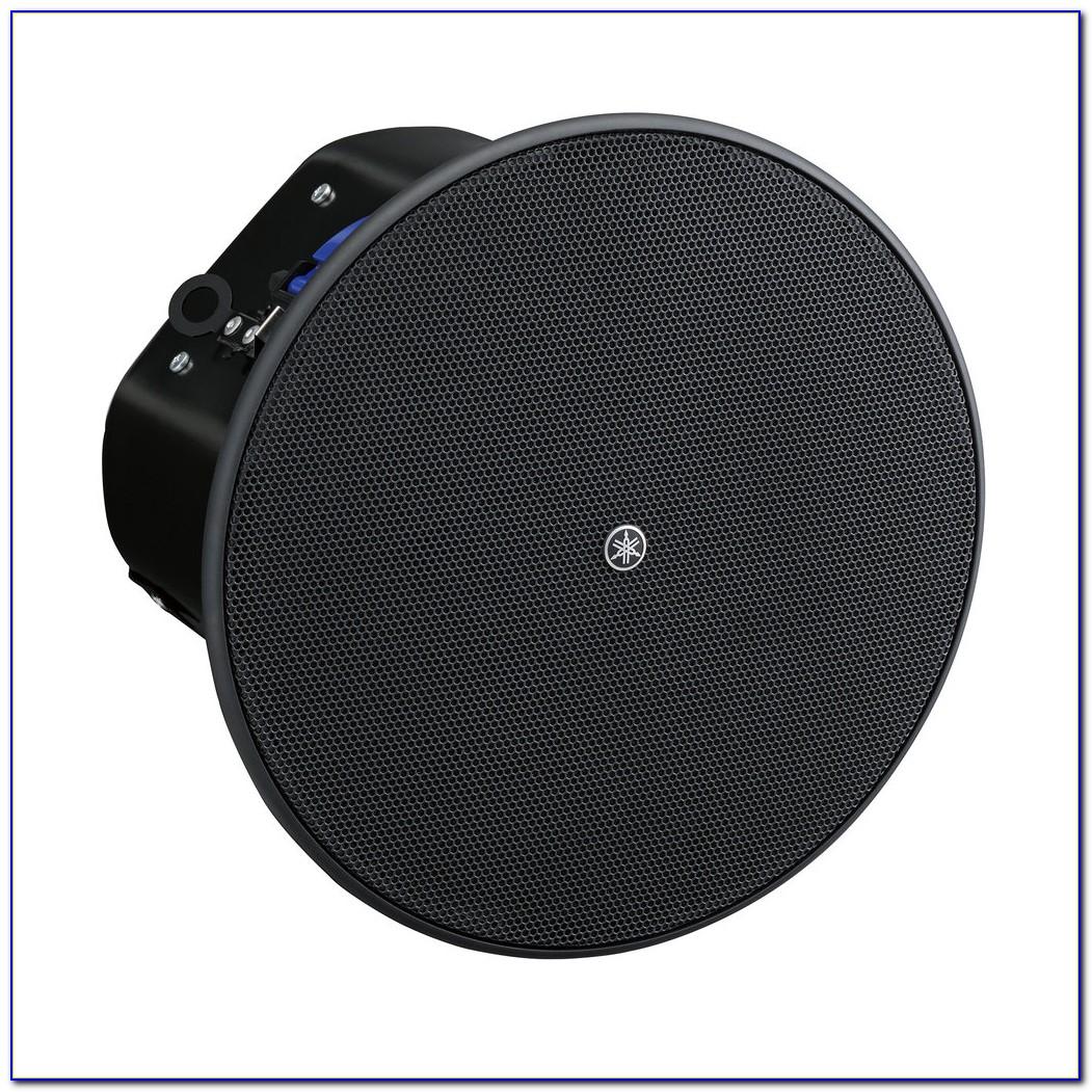 6 Or 8 Inch Ceiling Speakers