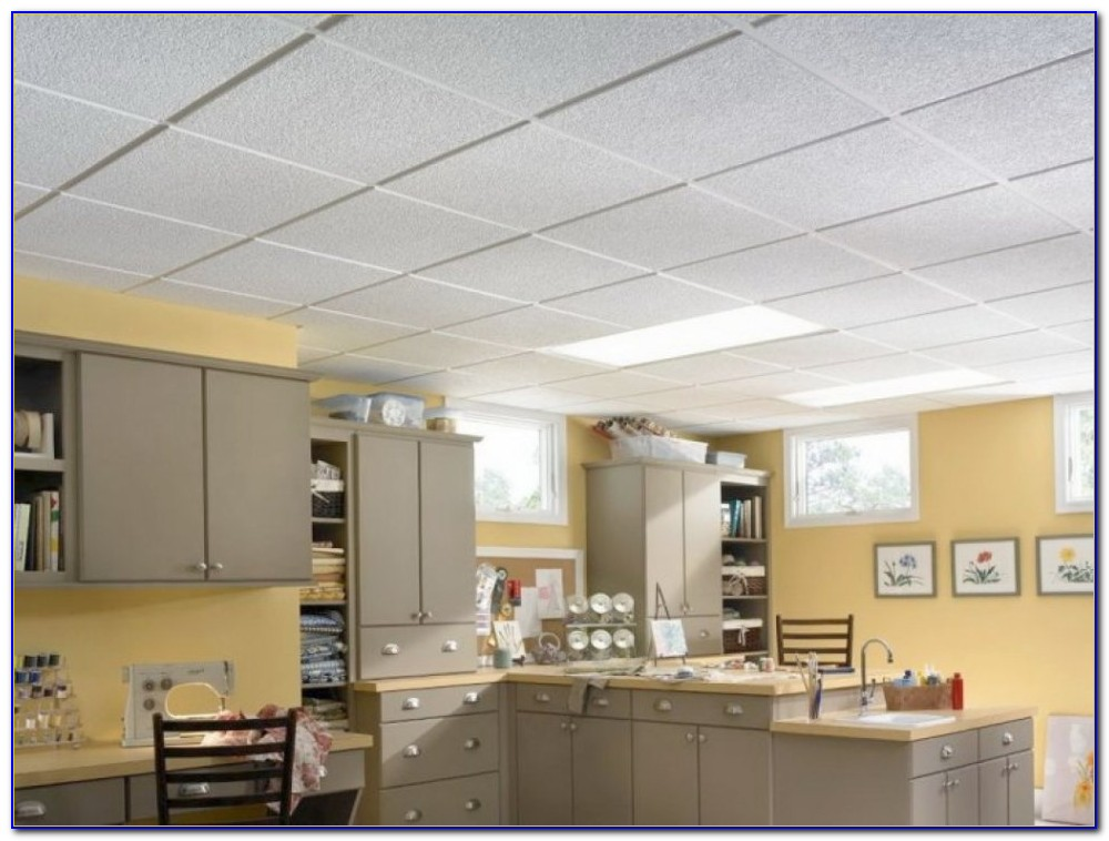 Armstrong Ceiling Tile 266b