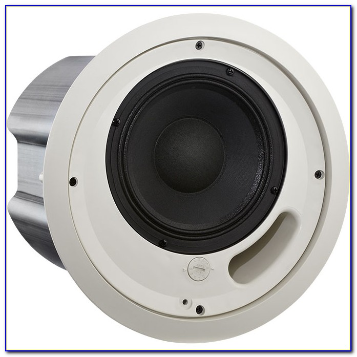 Best 2 Way Ceiling Speakers