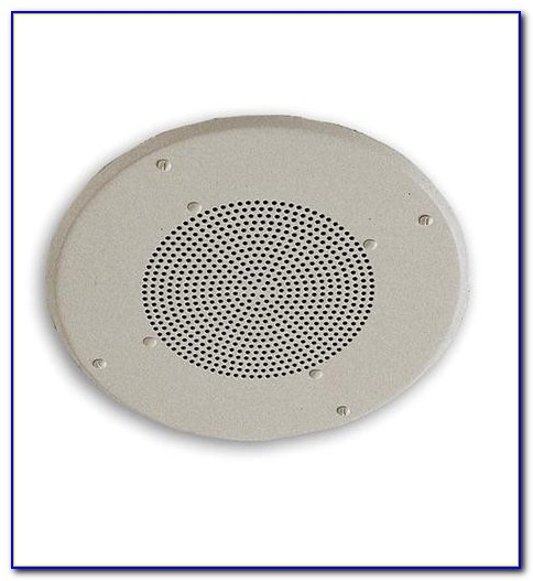 Bose Commercial Ceiling Speakers