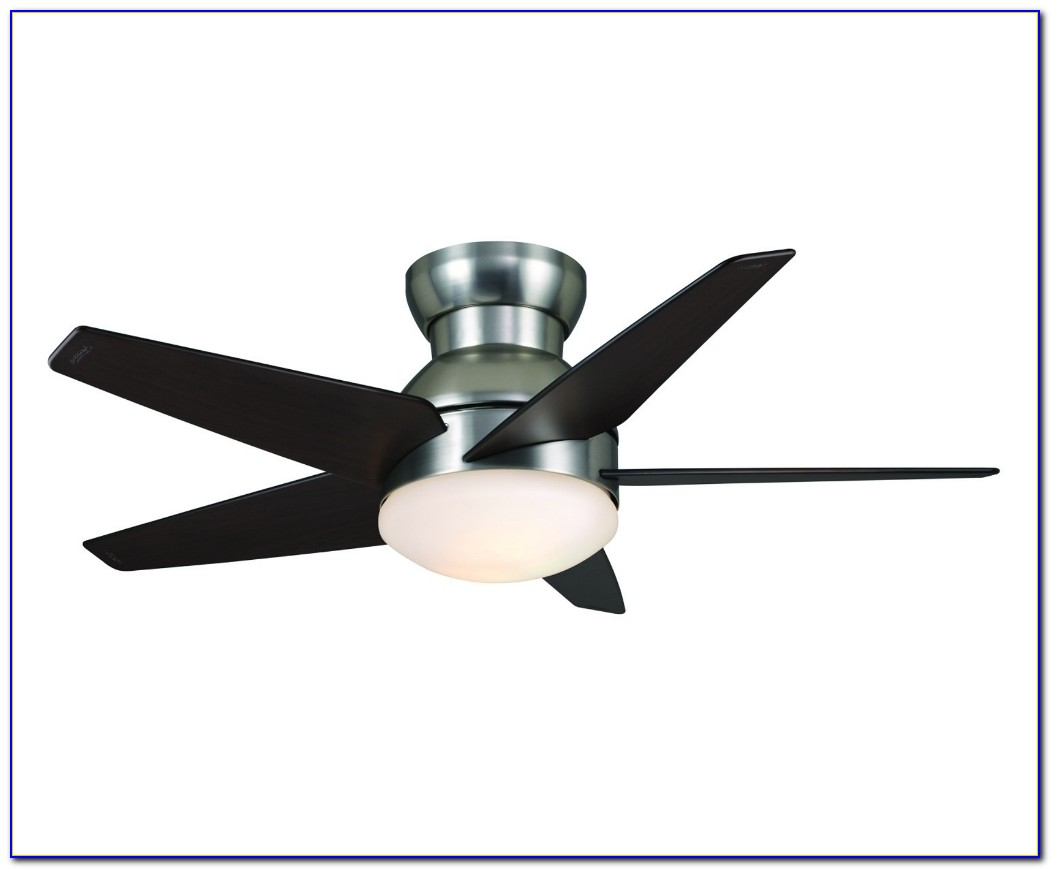 Ceiling Fans Duster For High Ceilings