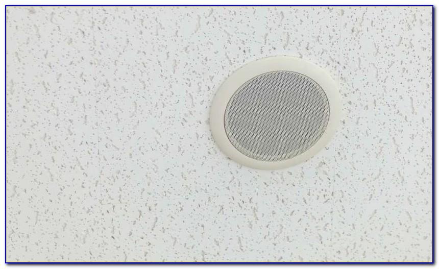 In Ceiling Speaker Wire