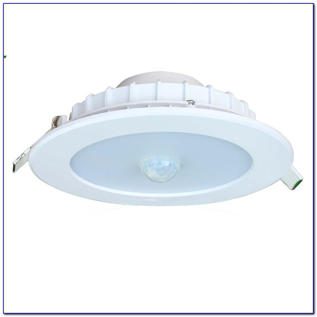 Motion Sensor Ceiling Light