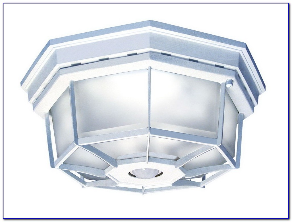Outdoor Ceiling Motion Sensor Led Light