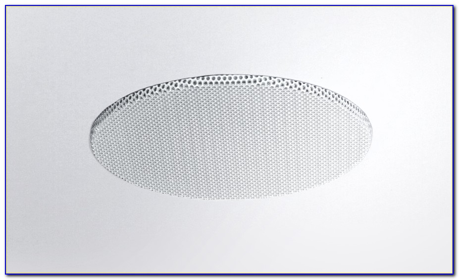 Small Bose Ceiling Speakers