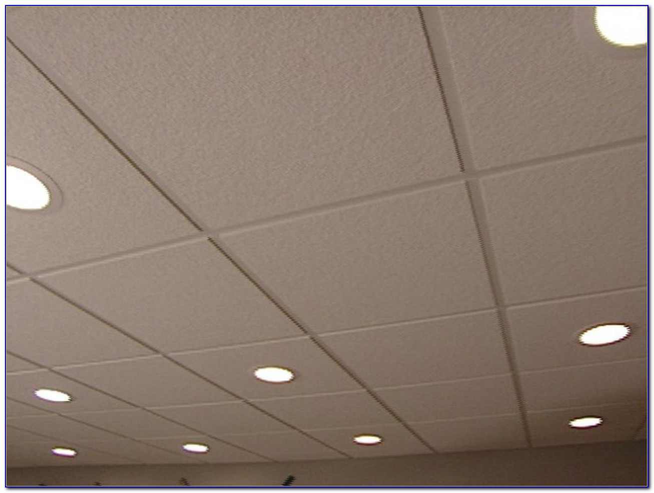 Acoustical Drop Ceiling Panels