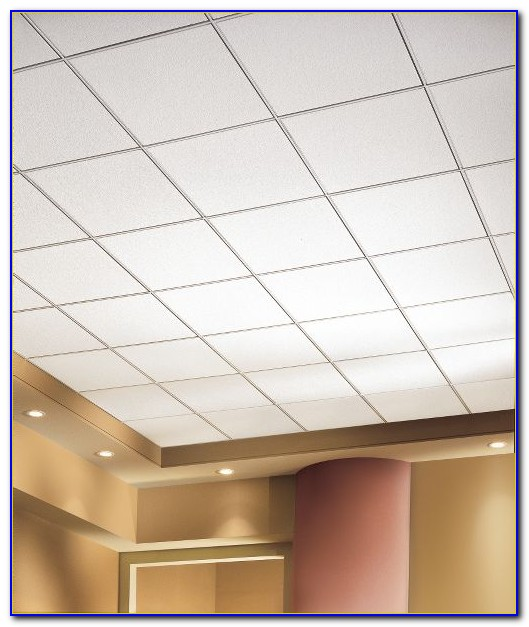 Acoustical Lay In Grid Ceiling