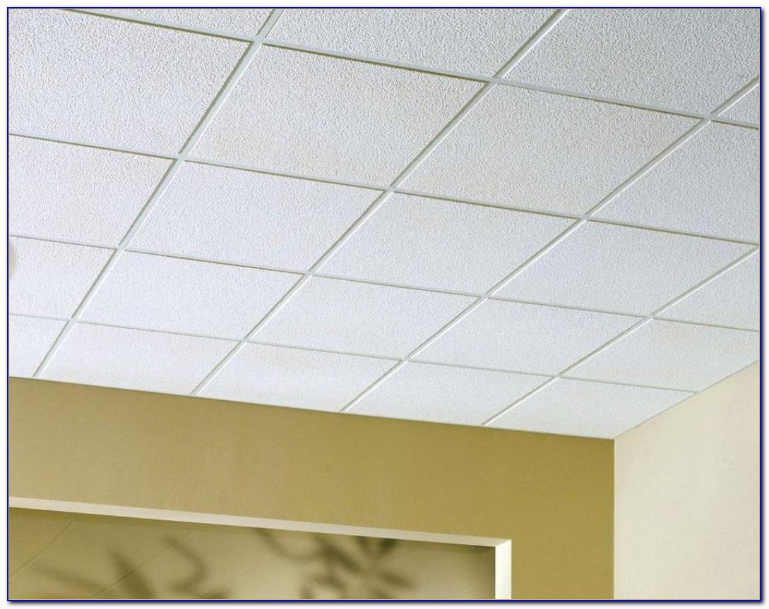 Armstrong Acoustical Ceiling Tiles Cortega
