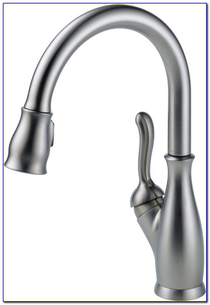 Best Pull Down Kitchen Faucet With Magnet