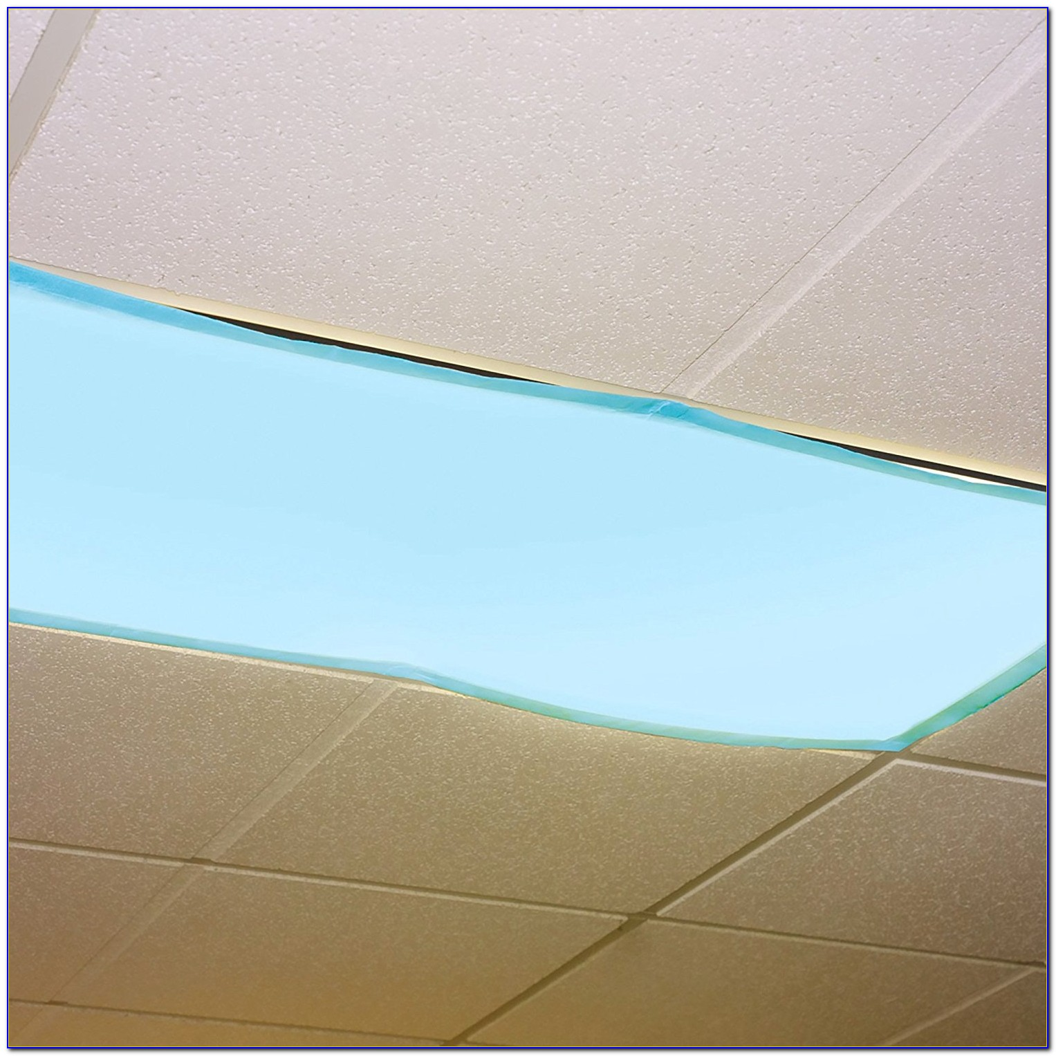 Cover Fluorescent Ceiling Lights