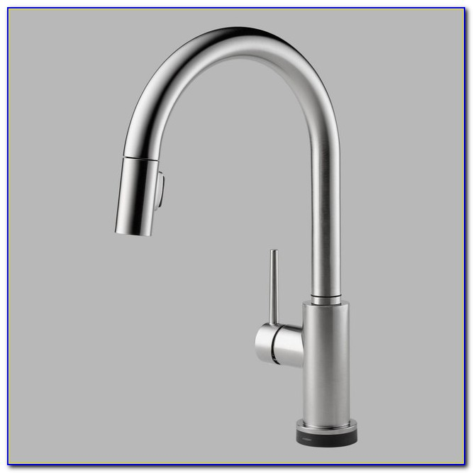 Delta Touch Kitchen Faucet Dripping