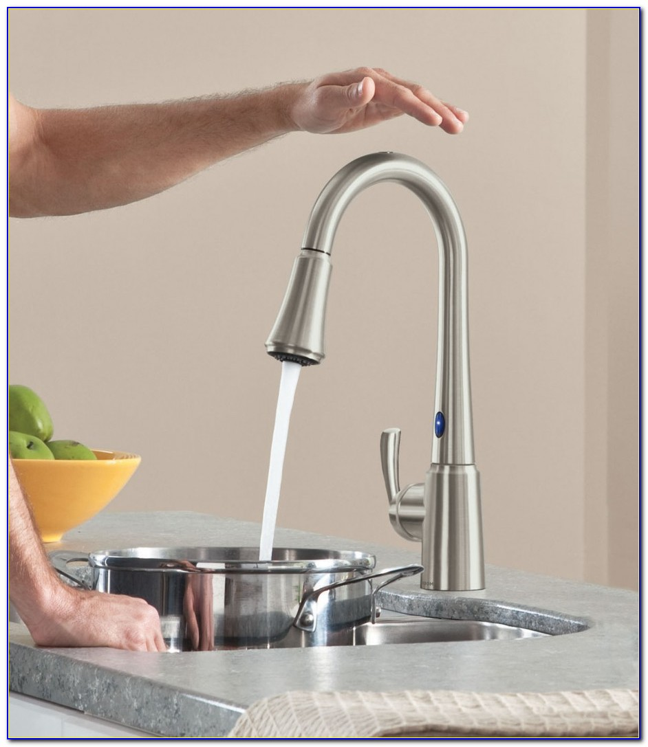 Delta Touch Sensor Kitchen Faucet