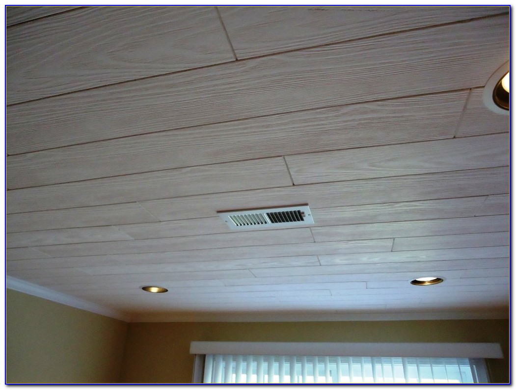 Drop In Ceiling Systems