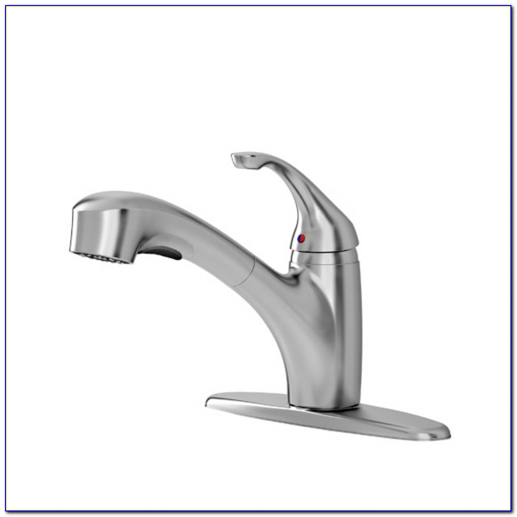 Glacier Bay Kitchen Faucet Spray Head