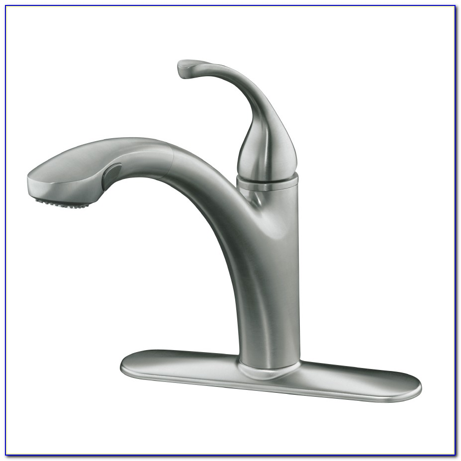 Kohler Pull Out Faucet Head