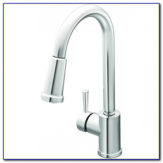 Moen Banbury Chrome Kitchen Faucet