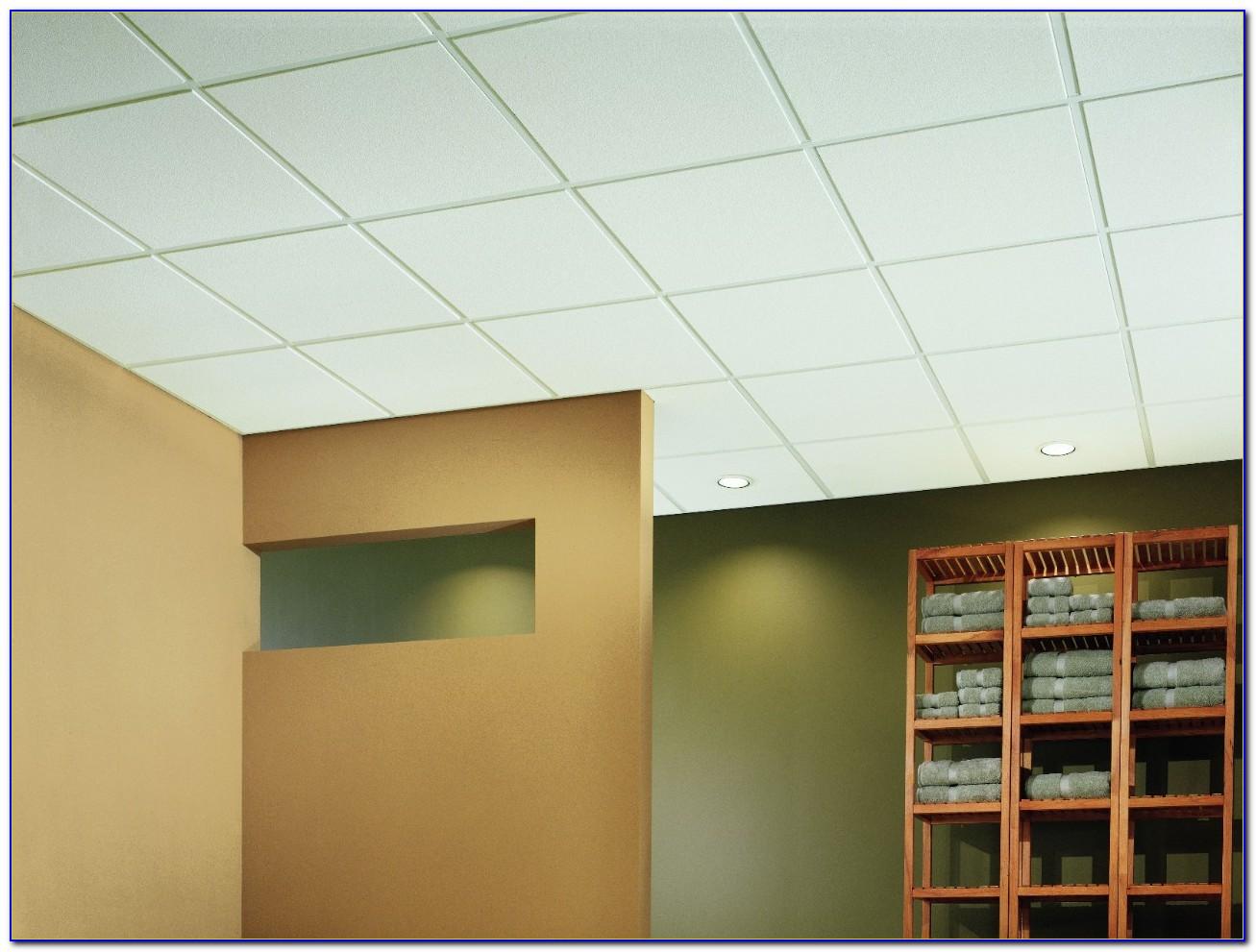 Usg Glacier Acoustical Ceiling Tile