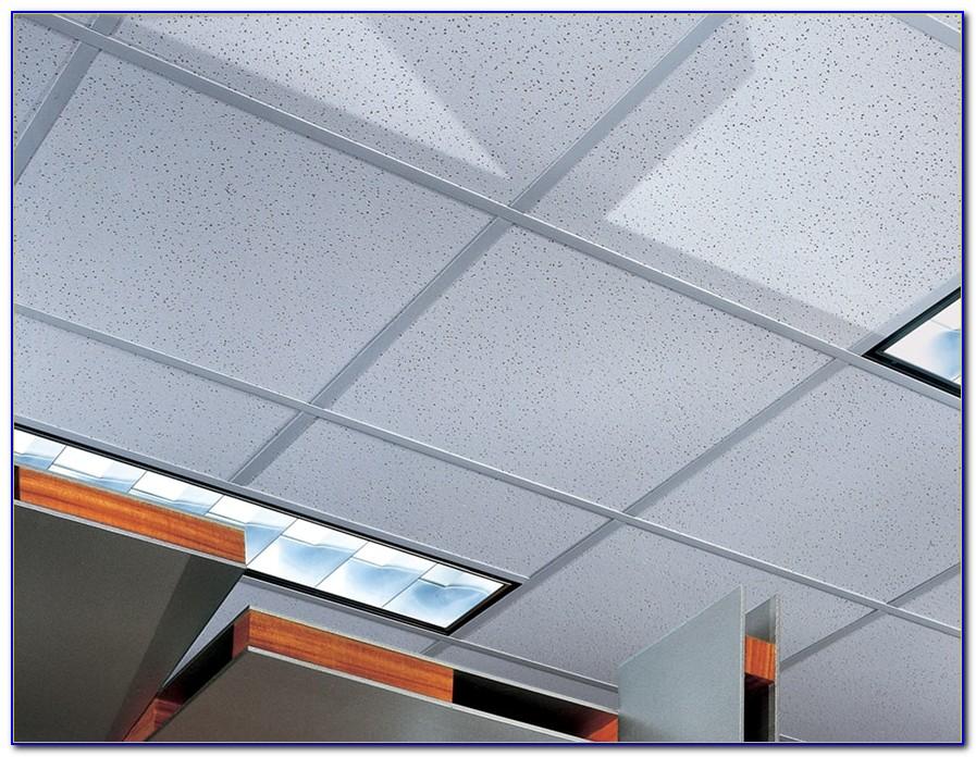 Usg Luna Acoustic Ceiling Tile