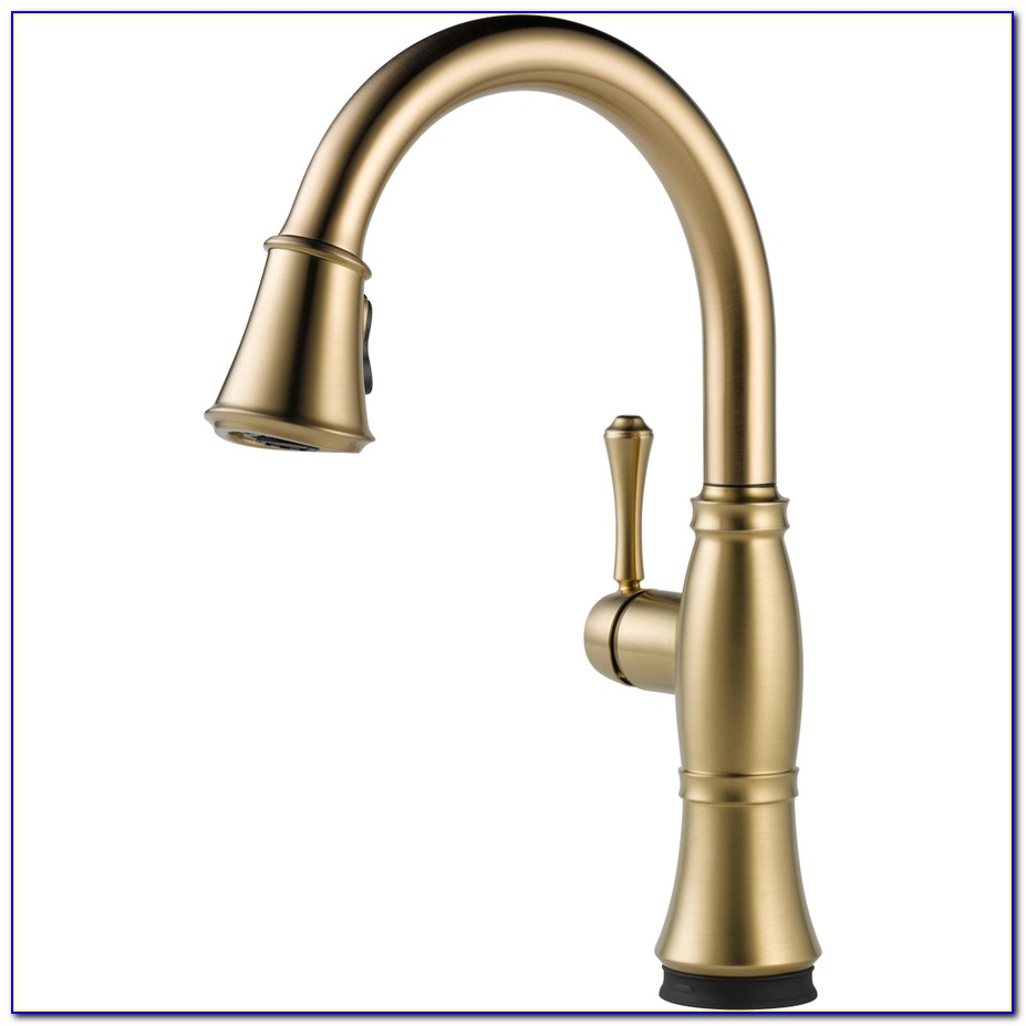 Delta Oiled Bronze Kitchen Faucet