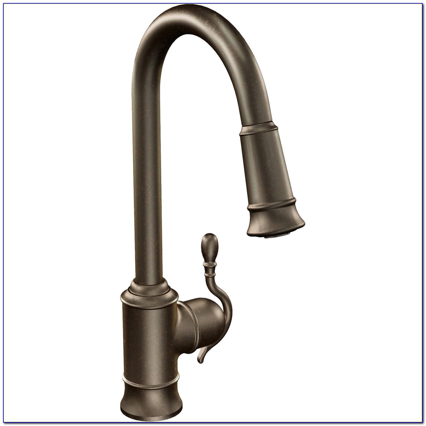 Moen Kitchen Sink Faucets Installation