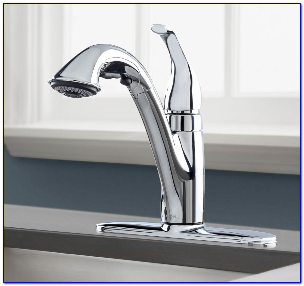 Peerless Pull Out Kitchen Faucet Brushed Nickel