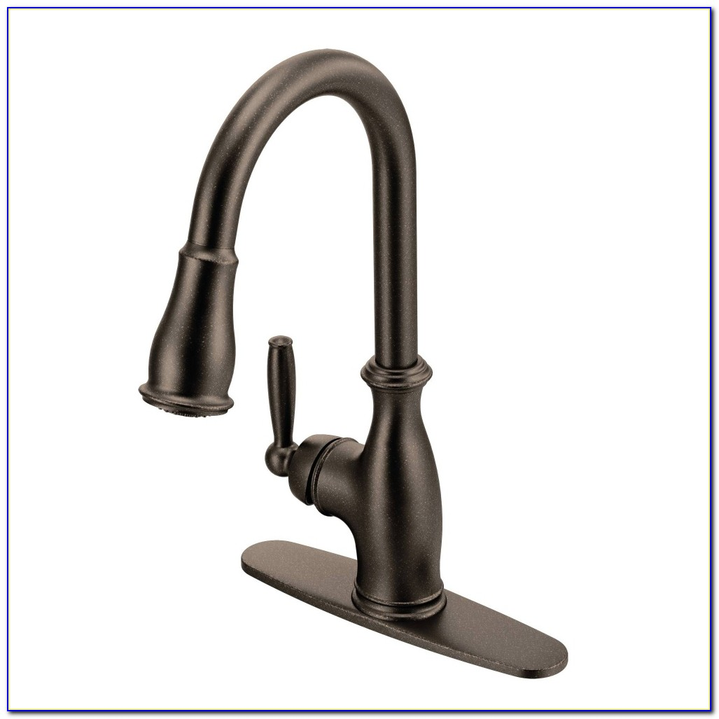 Pictures Of Older Moen Kitchen Faucets