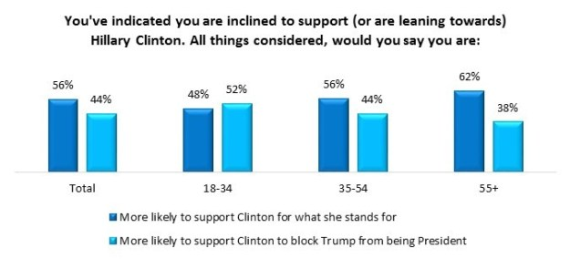 """Americans on both sides see this election cycle as """"really"""