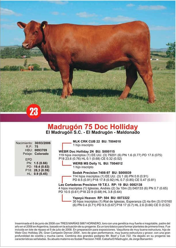 lote23_1