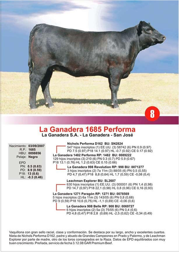 lote8_1