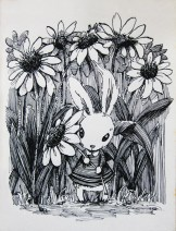daisy-rabbit