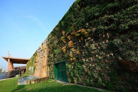 Những bức tường 'sống' của thiên nhiên - 8