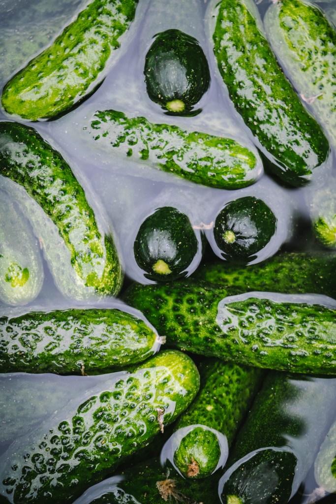 Ridge cucumbers, pickles