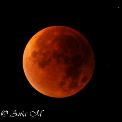 Bloody Moon!