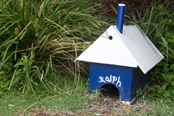 Ralph's house - Home for Fairy Penguins
