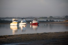 Boats were glistening in the early morning sun with a misty scene in the background.