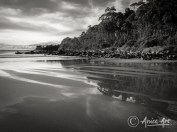 Shapes and colours of Narrawallee's spring tide-5