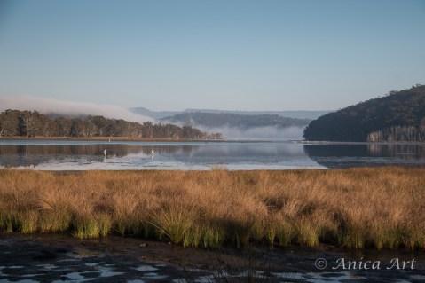 Burrill Lake -10