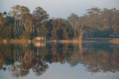 Burrill Lake -5