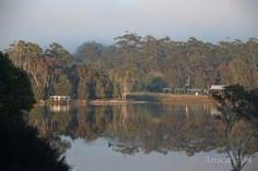 Burrill Lake -9