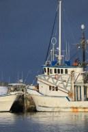 Ulladulla Harbour this afternoon-9
