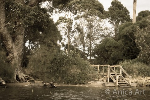 Narrawallee Inlet - up the river (1)