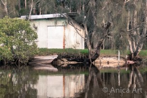 Narrawallee Inlet - up the river (7)