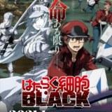 『はたらく細胞BLACK』 第1弾PV解禁!キャスト・スタッフ更新!
