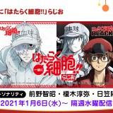 2021冬アニメラジオ&<音泉>新番組一覧