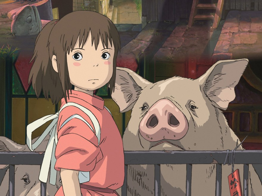 Chihiro cerdo