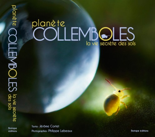 Philippe Lebeaux Planète collemboles la vie secrète des sols