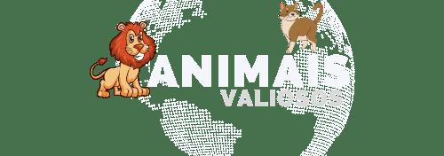 Animais Valiosos