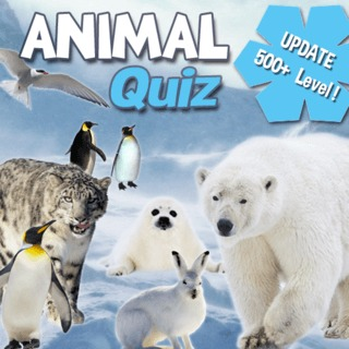 Guess the animals name! - Animal Quiz - The Best Animals in