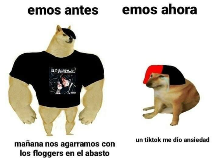 Ultimos Memes Memedroid